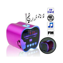 Mini enceinte portable Radio FM USB Micro SD Jack 3.5mm pomme Rose - www.yonis-shop.com